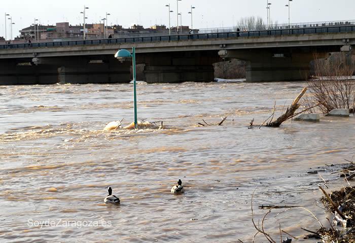 Crecida del Ebro en Zaragoza