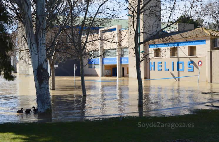 patos-puerta-helios-inundaciones