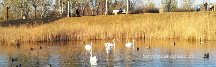 Imagen del Parque del Agua de Zaragoza, donde se celebrará la fiesta infantil el día de San Jorge